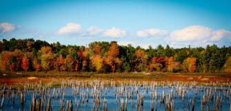 Tracy LeBlanc - Russell's Way Pond in the Fall (courtesy - Patti Mason)